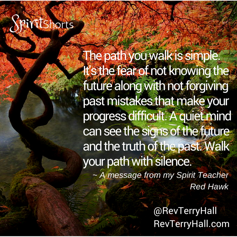 a message from psychic medium rev terry hall's spirit guide red hawk