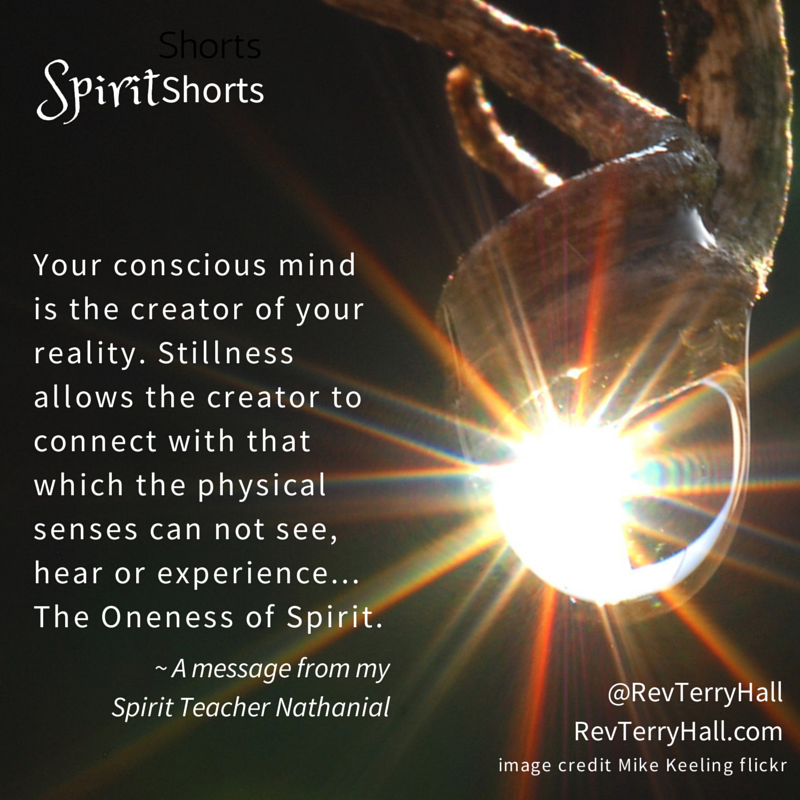 Your conscious mind is the creator of your reality. Stillness allows the creator to connect with that which the physical senses can not see, hear or experience... The Oneness of Spirit.