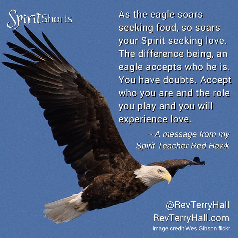 As the eagle soars seeking food, so soars your Spirit seeking love. The difference being, an eagle accepts who he is. You have doubts. Accept who you are and the role you play and you will experience love.