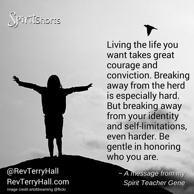 Living the life you want takes great courage and conviction. Breaking away from the herd is especially hard. But breaking away from your identity and self-limitations, even harder. Be gentle in honoring who you are.