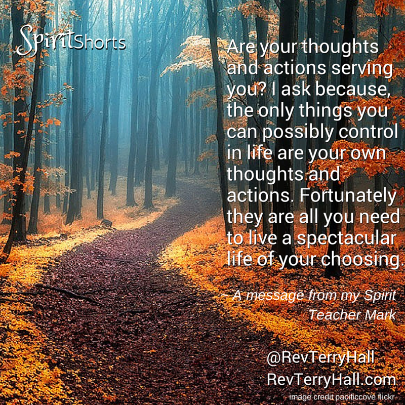 Are your thoughts and actions serving you? I ask because, the only things you can possibly control in life are your own thoughts and actions. Fortunately they are all you need to live a spectacular life of your choosing.