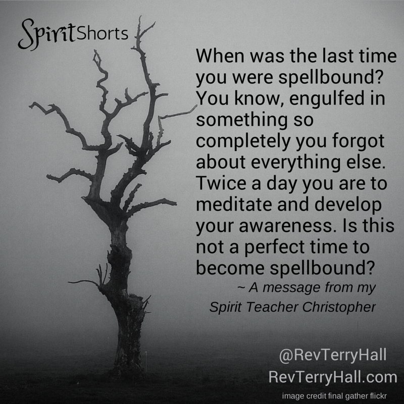 When was the last time you were spellbound? You know, engulfed in something so completely you forgot about everything else. Twice a day you are to meditate and develop your awareness. Is this not a perfect time to become spellbound?