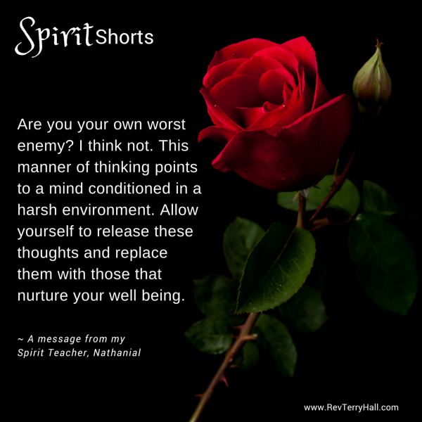 Are you your own worst enemy? I think not. This manner of thinking points to a mind conditioned in a harsh environment. Allow yourself to release these thoughts and replace them with those that nurture your well being.