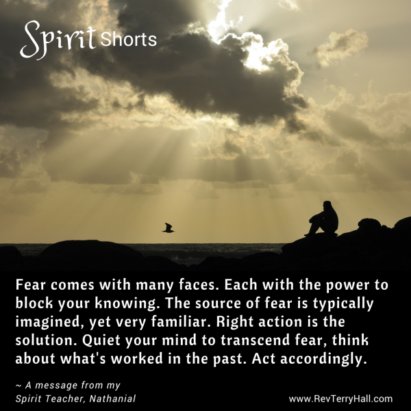 Fear comes with many faces. Each with the power to block your knowing. The source of fear is typically imagined, yet very familiar. Right action is the solution. Quiet your mind to transcend fear, think about what's worked in the past. Act accordingly.