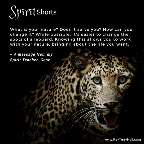 What is your nature? Does it serve you? How can you change it? While possible, it's easier to change the spots of a leopard. Knowing this allows you to work with your nature, bringing about the life you want.