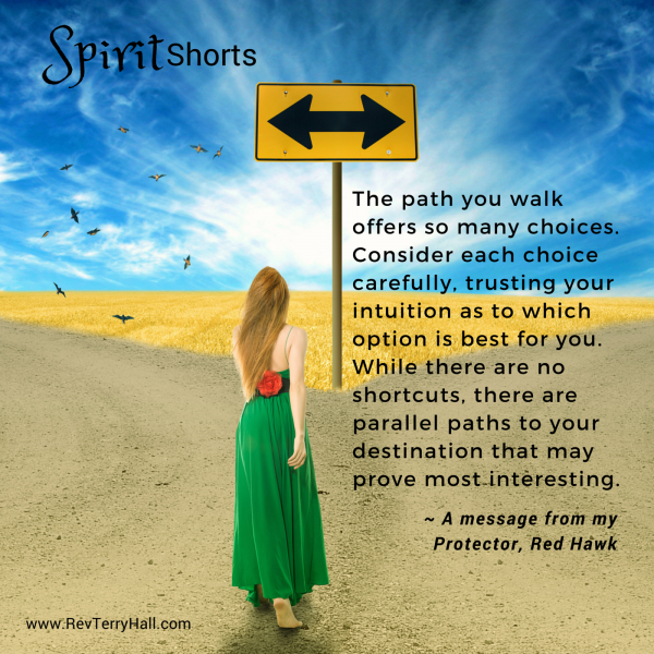 The path you walk offers so many choices. Consider each choice carefully, trusting your intuition as to which option is best for you. While there are no shortcuts, there are parallel paths to your destination that may prove most interesting.