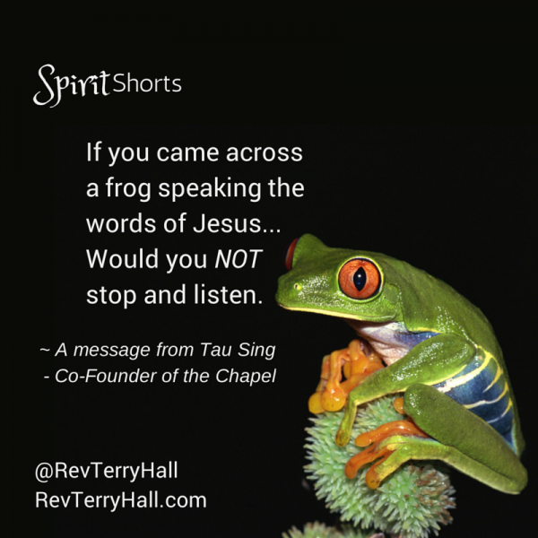 If you came across a frog speaking the words of Jesus, would you not stop to listen?
