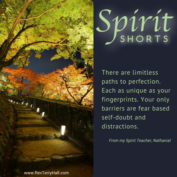 Spiritual Barriers: There are limitless paths to perfection. Each as unique as your fingerprints. Your only barriers are fear based self-doubt and distractions.