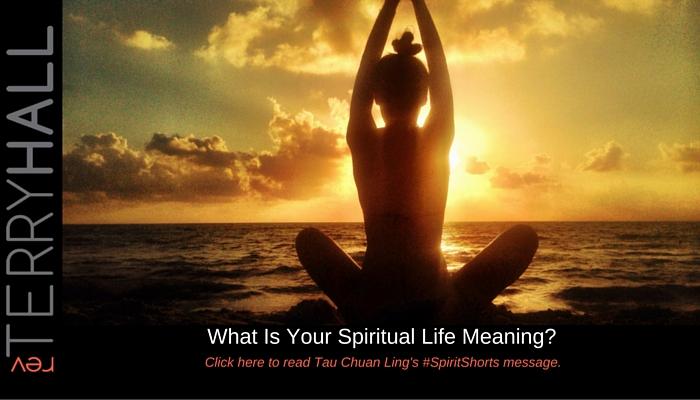 spiritual meaning of life - spirit shorts - ts hall stoic medium